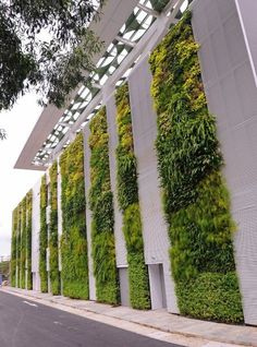 50 Green wall Design Inspiration is a part of our collection for design inspiration series.Green wall Design Inspiration is an inspirational series Garden Wall Designs, Vertical Garden Design, Vertical Gardens, Landscape Walls, Landscape Design, Vertical Green Wall, Green Facade, Green Corridor, Design Exterior