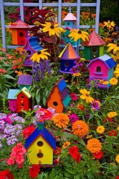 small flower gardens for beginners - Google Search