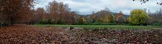 Miguel Angel SGR posted a photo:  Los días de lluvia de otoño acentúan los colores de la escena y nos dejan una amplísima gama de tonalidades para deleite de la vista.  Fuentes del Marqués - Caravaca de la Cruz - Murcia - Esopaña / Spain.