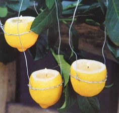Melt down old candles and mix lemon juice in and use the lemon as the container