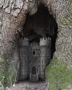 Angie Tanksley - Whenever I see tree hollows, my imagination leads me down this road. Swipe to see the beginning image and also an image after I placed the castle inside. Let Me In, Dark Images, Imagination, Castle, Magic, Led, Places, Instagram, Dark Pictures