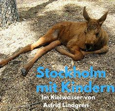 Zimtschnecken, Inseln, Elchbabys: Stockholm ist perfekt für einen Städtetrip mit Kindern. #Stockholm #Schweden #Sweden #reiseblogger #reisenmitkindern #Städtereise