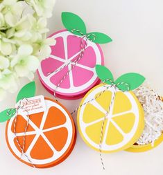 Use the #marthastewart Extra Large Circle Punch and Simple Circle Cutter to create these Summer Citrus Treat Boxes #12monthsofmartha