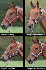 Bridleway Padded Nylon Breakaway Halter - Quality Tack at Outlet Prices - VTO Saddlery $14.95