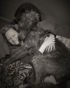 Scottish Deerhounds are known for being lapdogs. (Just kidding. But don't tell them that...)
