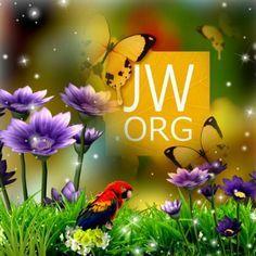 jw.org - Pesquisa Google