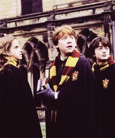 Hermione Granger, Ron Weasley and Harry Potter Fantasia Harry Potter, La Saga Harry Potter, Images Harry Potter, James Potter, Harry Potter Movies, Hermione Granger, Ron And Hermione, Ron Weasley, Golden Trio