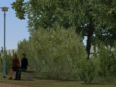Vegetations-Set Sträucher und Stauden