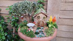 Fairy & Elf Garden - Pinecone Cottage with bird bath.  #fairygarden