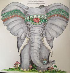#animorphia elephant