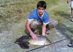 See this image on PescaOk: Una bella carpa specchio da 7.5 kg