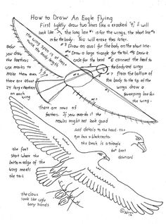 How to print a flying eagle printable worksheet