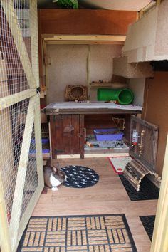 Shed interior makes a cool bunny pen