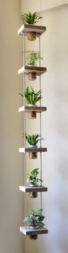 Eine tolle idee,aus viereckigen Holzbrettern in der Mitte ein Loch gemacht und entweder Gläser mit Pflanzen oder auch Blumentöpfen.