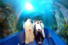Sharjah Aquarium Cultural Capital, Cultural Identity, Sharjah, United Arab Emirates, Uae, Aquarium, Tourism, Places To Visit, Culture