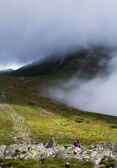 Carpathian mountains Ukraine Carpathian Mountains, Top Destinations, Ukraine, Wanderlust, Around The Worlds, Europe, Dreams, Places, Nature