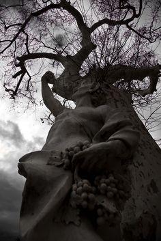Bacchus by Luca La Veglia on 500px