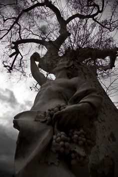 Bacchus by Luca La Veglia on 500px