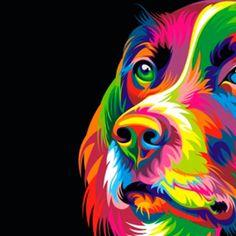 Art & Color Total