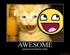And cats can be AWESOME! :D