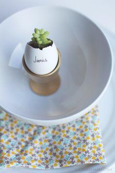 Little Egg Succulent Planter