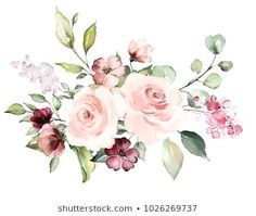 Similar Images, Stock Photos & Vectors of decorative watercolor flowers. floral illustration, Leaf and buds. Botanic composition for wedding or greeting card. branch of flowers - abstraction roses, romantic - 1024091212 Simple Watercolor Flowers, Easy Watercolor, Watercolor Print, Watercolor Paintings, Watercolor Drawing, Illustration Art Drawing, Botanical Illustration, Vintage Birds, Vintage Floral