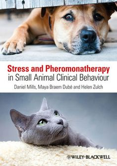 """Read """"Stress and Pheromonatherapy in Small Animal Clinical Behaviour"""" by Daniel S. Mills available from Rakuten Kobo. Stress and Pheromonatherapy in Small Animal Clinical Behaviour is about how stress impacts on animal behaviour and welfa. Abnormal Psychology, Cognitive Behavior, Learning Theory, Fancy Cats, Book Names, Mental Health Problems, Diy Stuffed Animals, Pet Health, Clinic"""