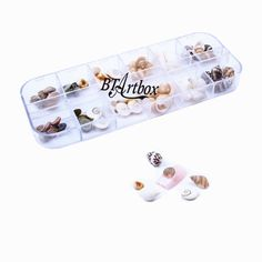 BTArtbox Newest 60pcs special Natural Shell-fish design Sea snail, shell,field snail 3D nail art DIY decoraton * Read more  at the image link.