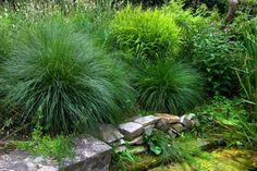 Tips onderhoudsvrije tuin