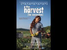 La Cosecha, documental