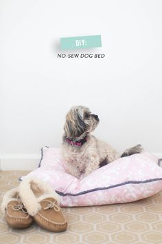 DIY No-Sew Dog Bed  Read more - http://www.stylemepretty.com/living/2014/03/18/diy-no-sew-dog-bed/