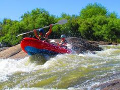 Having fun on the river South Africa, Safari, Have Fun, River, Rivers