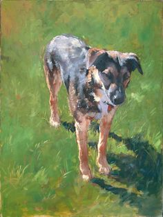 Patrick Saunders Fine Arts - Dog Portrait - Painting - Oil on Canvas - Barney