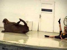 Walrus sit ups. Who knew? :D