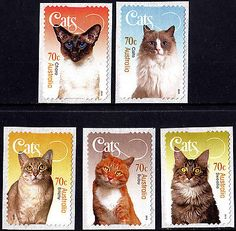 Australia 2015 Cats set of five stamps S/A, MUH