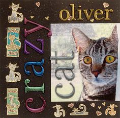 Crazy Cat Scrapbook Page Layout | Ranger Ink and Innovative Craft ...