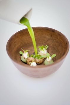 Pujol Mexico City - 38 on worlds best restaurant list. New Wave Mexican.