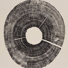 Each ring is a reminder of the life once lived  #BryanNashGill Chaque cerne rappelle une vie precedente  #Print #Wood #Art #Ink #Inspire #Artist