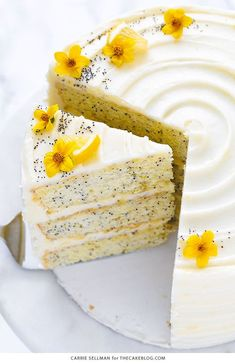 May 2019 - Lemon Poppyseed Cake. A tender layer cake recipe brightened with lemon juice, lemon zest and poppy seeds, frosted with a tangy sweet lemon cream cheese frosting. Just Desserts, Delicious Desserts, Dessert Recipes, Yummy Food, Easter Desserts, Easter Recipes, Recipes Dinner, Yellow Desserts, Fancy Recipes