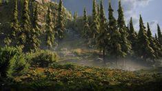 Vegetation Creation Techniques for Video Games