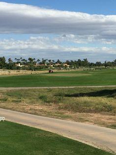 Camelback Golf Course. Scottsdale, AZ. 11/2015. -16