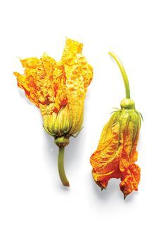 Squash blossoms, chiles, cheeses, and more! See the Saveur guide to the essential ingredients and tools of a Mexican pantry