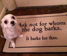 the dog barks funny - Dump A Day