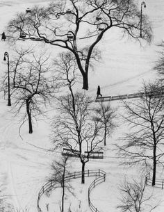 Andre Kertesz's Photos From His Window - The New York Times Andre Kertesz, Contemporary Photography, White Photography, Street Photography, Washington Square Park, Photography Exhibition, Piet Mondrian, National Gallery Of Art, Birds Eye View