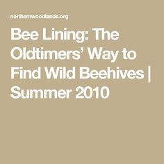 Bee Lining: The Oldtimers' Way to Find Wild Beehives | Summer 2010