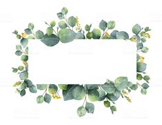 Watercolor vector wreath with green eucalyptus leaves and branches. royalty-free watercolor vector wreath with green eucalyptus leaves and branches stock vector art & more images of art Wreath Watercolor, Watercolor Flowers, Watercolor Paintings, Green Watercolor, Branch Vector, Illustration, Eucalyptus Leaves, Floral Border, Purple Flowers