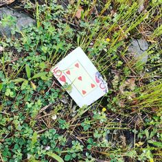 A random playing card beside a quiet country road on which I'm alone. The Five of Hearts. Is it a sign?  #playingcards #divination #cardreader