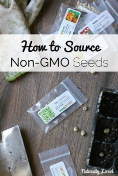 Looking for a good seed company to support that has no affiliation with Monsanto & cares about seed preservation? Find out how to source non-GMO seeds here