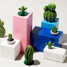 Medium Cactus Jar - Trouva