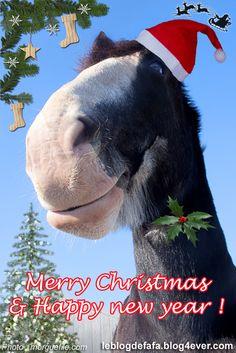 Image Of Riding horse..haha....up North Santa sometimes gives his ...